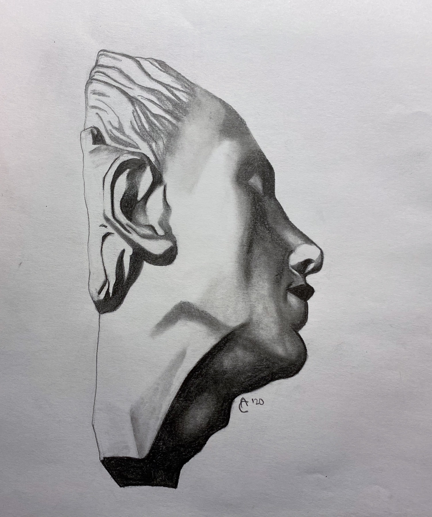 Side Profile Portrait Drawing Archives Franklin College