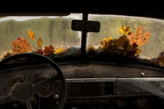 Photo-Greg-Potter-54-pickup-landscape-2