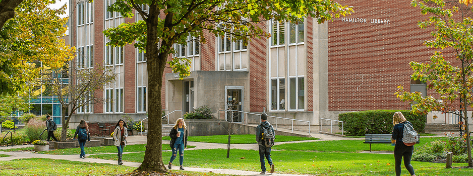 Several students walking across Dame Mall